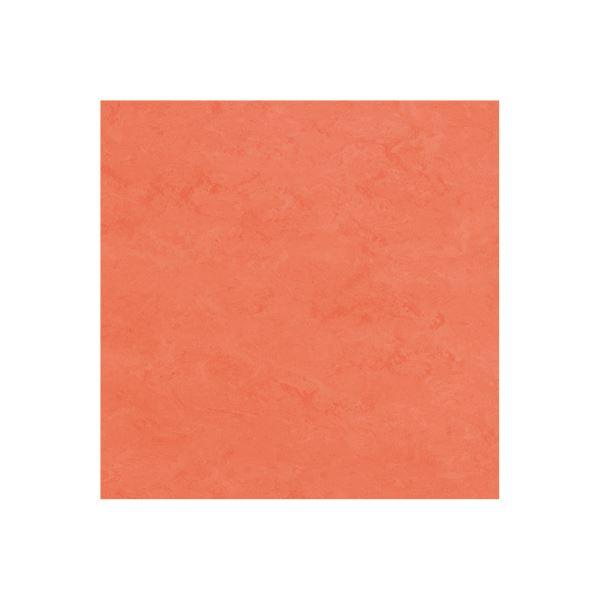 インテリア・寝具・収納 関連 東リ ビニル床タイル フェイソールプルス サイズ 45cm×45cm 色 FPT2066 14枚セット【日本製】