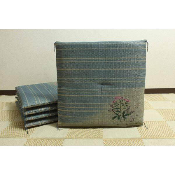 純国産 捺染返し い草座布団 『藤袴(ふじばかま) 5枚組』 約55×55cm×5P