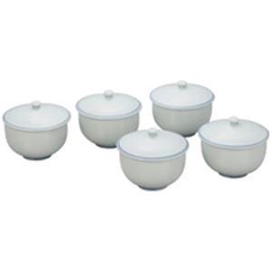 キッチン・食器 (業務用10セット) いちがま 青白青地 蓋付煎茶5客揃 【×10セット】