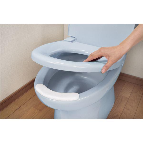 健康器具 (まとめ)サンコー 排泄物処理 おしっこ吸いとりパットL15コ入 AE-61【×10セット】