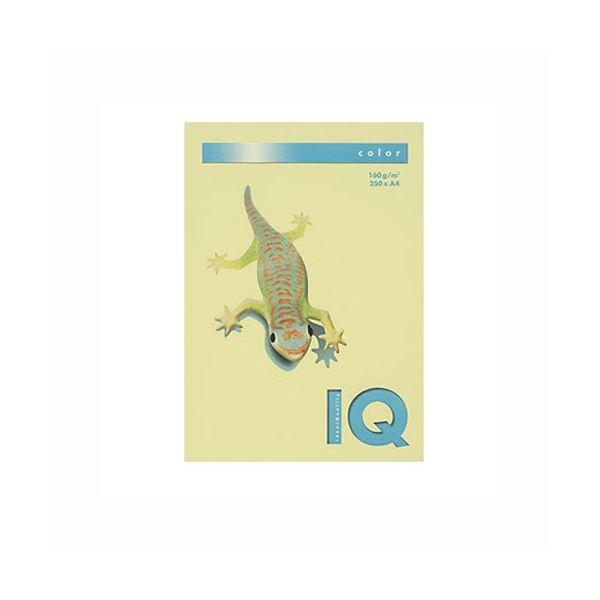 (業務用セット) 伊東屋 バイオトップカラー A4判 250枚入 160g/m2 BT827 レモン 【×2セット】
