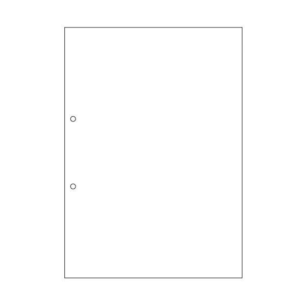 文房具・事務用品 紙製品・封筒 伝票 関連 マルチプリンタ帳票(FSC森林認証紙) A4白紙 2穴 1セット(1000枚:500枚×2箱)