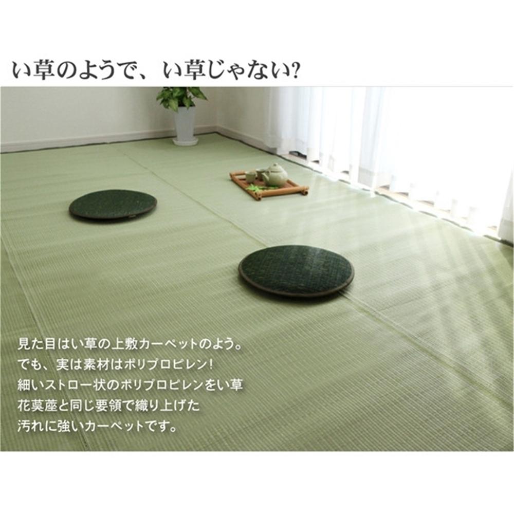 ござ マット パイプ状 洗える PPカーペット サイズ:435×352cm