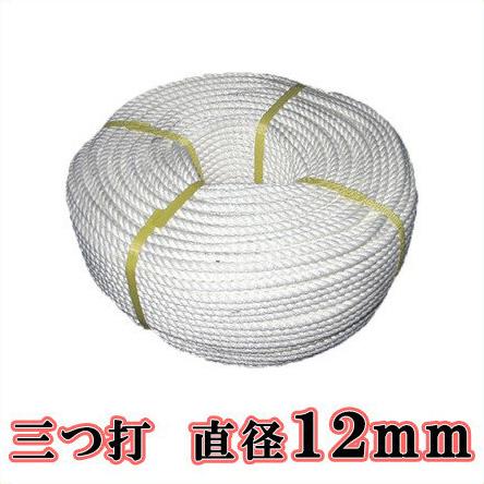 【送料無料】生川 ビニロンS ロープ 3つ打 直径12mm 長さ100m[繊維ロープ 非難グッズ 防災グッズ 防災ロープ 非難ロープ 縄 白色]
