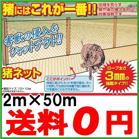 防獣ネット 害獣ネット 猪ネット 2m×50m [農業資材 網 農業用ネット]