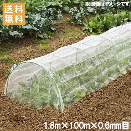 防虫ネット 0.6mm目 1.8×100m 農業用ネット [遮光ネット 防草シート トンネル プランター 農業資材]