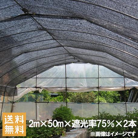遮光ネット 黒 2m×50m×2本セット 100m 遮光率75% [農業用遮光シート 農業資材 農業用品 園芸用品 日よけ 農業用ネット]