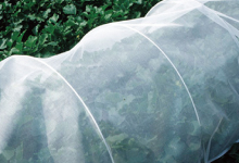 marusoru寒冷纱遮阳帘克雷莫纳寒冷纱黑1.35×5M农业材料