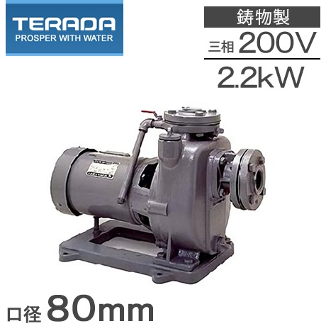 寺田ポンプ セルプラポンプ MPJ6-52.21E 50Hz/200V [給水ポンプ 循環ポンプ 農業用ポンプ]