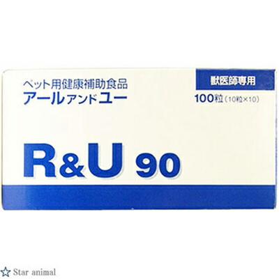 共立製薬 R&U90 100粒