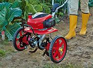 ホンダ耕運機F220/F402用 ニュースターローター専用 移動タイヤ(手押し式)[11834] honda/HONDA耕耘機/アタッチメント/耕運機/耕うん機/家庭菜園/畝立て/送料無料 ※こちらの商品はタイヤのみです。耕耘機本体は別途お買い求め願います, スーパーセール期間限定:6cbdf939 --- sunward.msk.ru