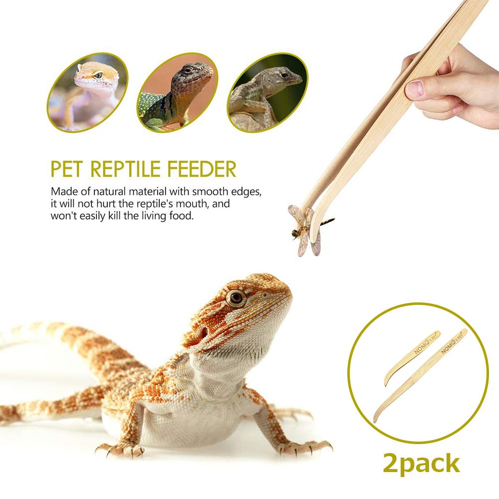 爬虫類 トカゲ 餌やり ピンセット2点セット 28cm16.5cm 直営限定アウトレット 大還元クーポン 母の日 品質保証 小 父の日 送料無料 大 配布中