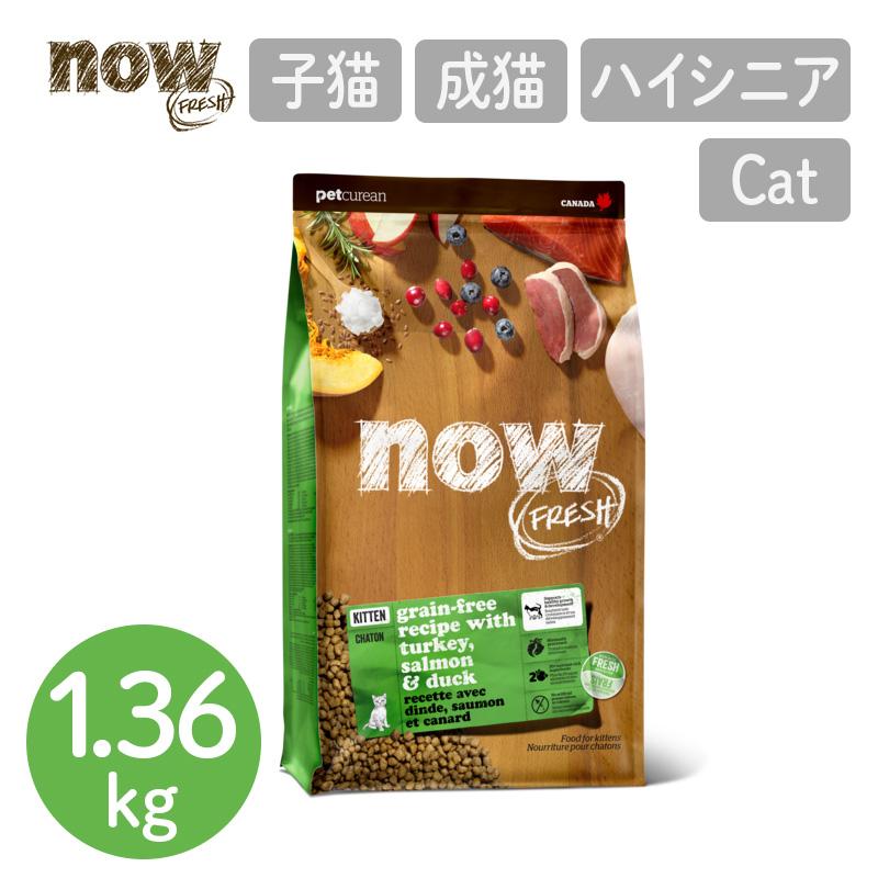 流行のアイテム 穀物不使用 100%フレッシュミート 生肉 鮮魚 使用 美味しく安心のキャットフード ナウフレッシュ NOW FRESH グレインフリー 子猫 キャットフード ドライフード フレッシュ 猫用 1.36kg フード 買収 カナダ産 キトン ナウ