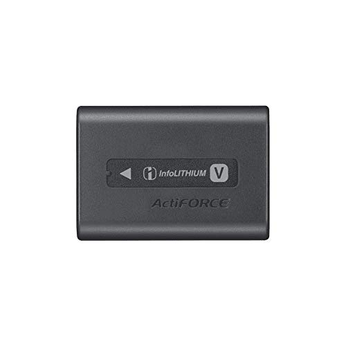 贈答 ソニー リチャージャブルバッテリーパック 初回限定 NP-FV70A