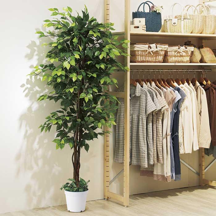 送料無料 フェイクグリーン ご注文で当日配送 人工観葉植物 おしゃれ 大型 幹には天然木を使用しています ベンジャミングリーン エントランスや広い店舗空間にぴったり H210cm夏の爽やかな店内装飾におすすめの人工樹木 ストア オフィスインテリアとしてもおすすめの人工観葉植物です