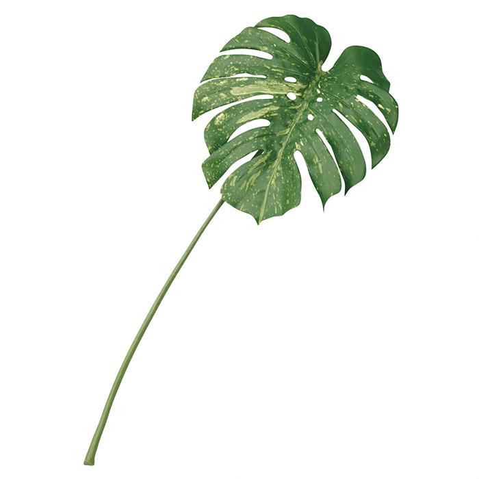 送料無料 フェイクグリーン 人工観葉植物 おしゃれ モンステラ ボタニカルリーフ モンステラ 3本セットテーブルに敷いたり花瓶に挿したり、手軽にトロピカルな南国の店内装飾を作れるモンステラのフェイクグリーンです。フェイクグリーン 人工観葉植物 おしゃれ モンステラ
