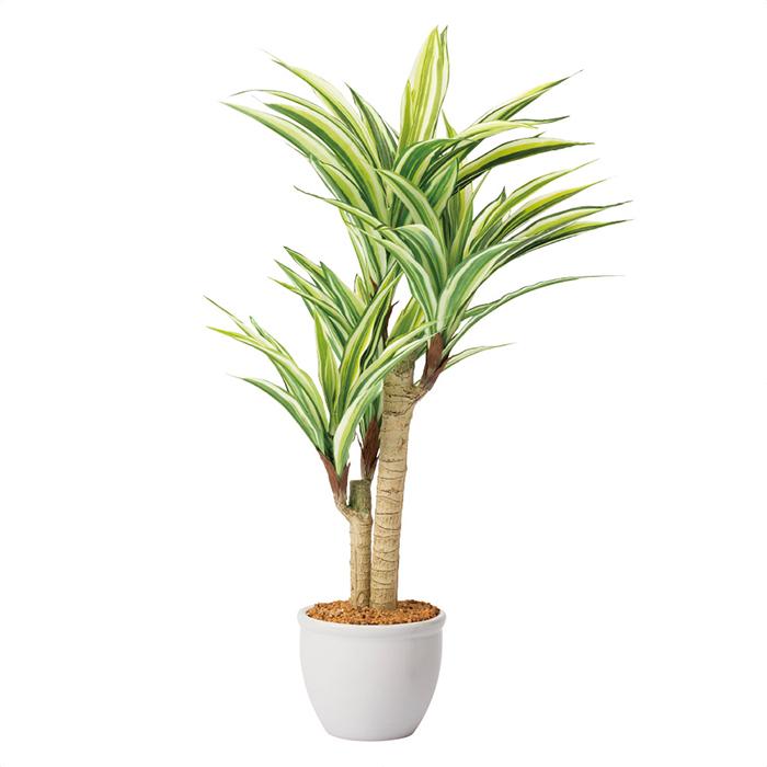 期間限定 送料無料 フェイクグリーン 人工観葉植物 人工樹木 おしゃれ 1台テーブルや棚など小さいスペースに置きやすいミディアムサイズ ドラセナ H68cm 売れ筋ランキング