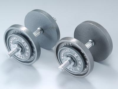アイアンダンベルセット30kg【マーシャルワールド製 格闘技 空手 筋トレ 器具トレーニング フィットネス】【strongsports】