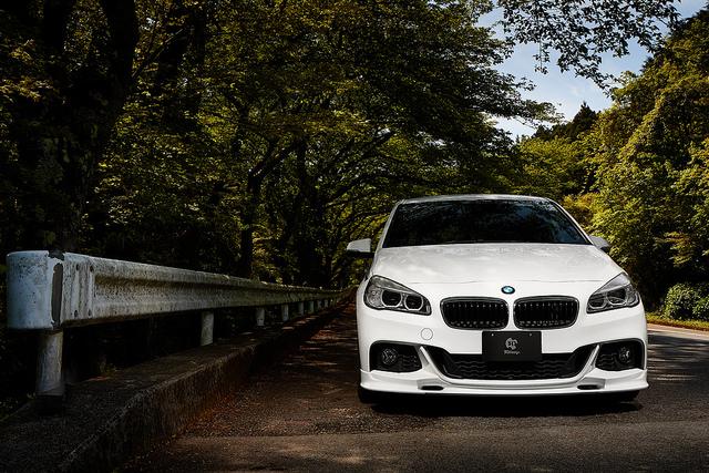3D Design フロントリップ for BMW F45/F46 M-SPORT
