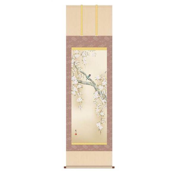 表具裂は12色から選べます 掛軸 三幸 侘1号 桜花に小鳥 尺五 観月 送料込 KZ2A2-085 154771459 低廉 森山
