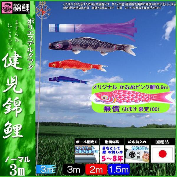 鯉のぼり 錦鯉 ノーマル 健児錦鯉 3m3匹 瑞雲吹流し 139600162