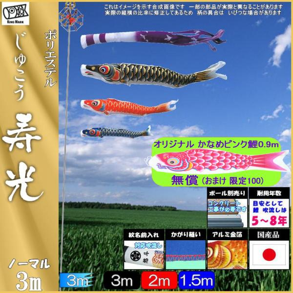 鯉のぼり キング印 山本 こいのぼりセット 寿光 3m6点 寿光吹流し ノーマルセット 139730046