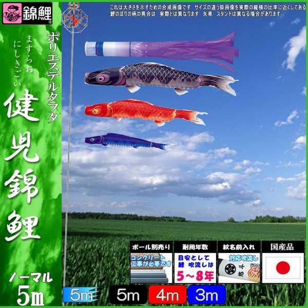 鯉のぼり 錦鯉 ノーマル 健児錦鯉 5m3匹 瑞雲吹流し 139600156