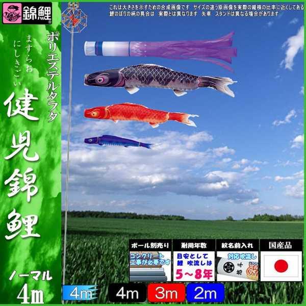 鯉のぼり 錦鯉 ノーマル 健児錦鯉 4m3匹 瑞雲吹流し 139600159