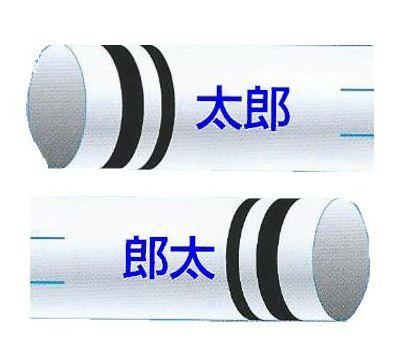 鯉のぼり 渡辺鯉 家紋名前入れ 2.5m以上 3m以下 パターンN-E 青 同じ名前 縦向き 横書き 同方向 両面1ヶずつ 139617936