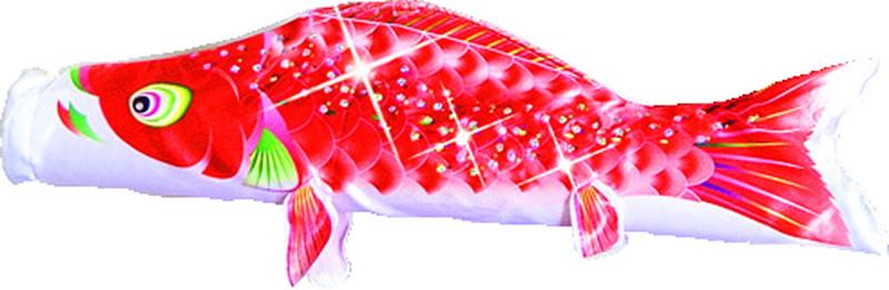 星歌 赤鯉 スパンコール 単品鯉 70cm 146929009