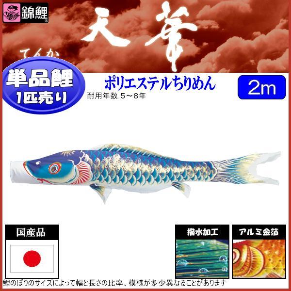 鯉のぼり 渡辺鯉 こいのぼり単品 天華 撥水加工 青鯉 2m 139617046