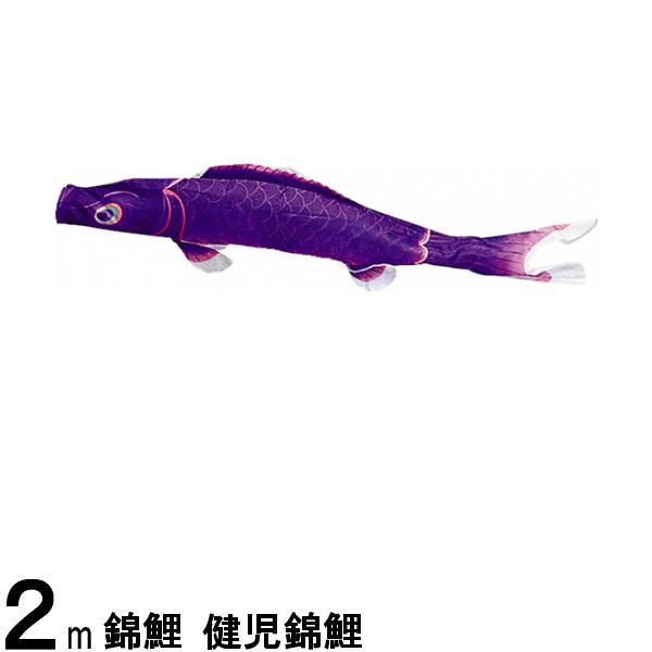 鯉のぼり 渡辺鯉 こいのぼり単品 健児錦鯉 紫鯉 2m 139617235
