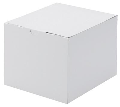 アントルメケース ホワイト 5号 100個セット