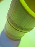 竹製業務用竹串入れ 100個セット販売 浄水竹炭5枚付