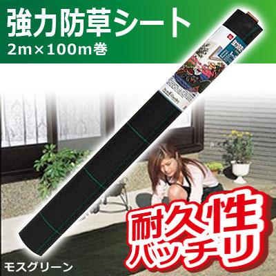 キンボシ kinboshi 強力防草シート(モスグリーン) 2m×100m巻 7219 送料無料