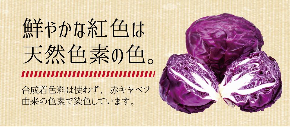 九州のおいしい紅しょうが 50g(固形量)×1袋貴重な国産生姜使用色んなお料理や添え物に♪【ゆうパケット対応・代引き不可】(※代引きはゆうパケット対象外)<出荷目安:1~2週間程度>