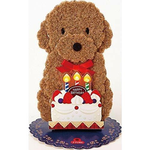 ■立てて飾れます■ライトが光ります 本物 HAPPY BIRTHDAY TO YOU■サイズ:109×202mm 再入荷いたしました バースデーカード ライト お得 メロディカード誕生日祝い トイプードル サンリオ ギフト グリーティングカード 光る 犬 お祝い 御祝 誕生日 プレゼント P245 476749