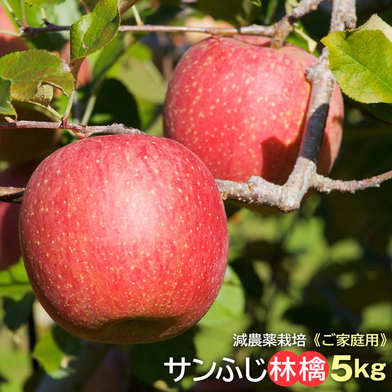 ご家庭用 長野産サンふじ林檎