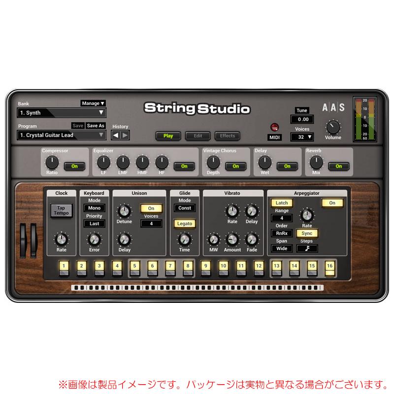 AAS STRING STUDIO VS-2 安心の日本正規品!