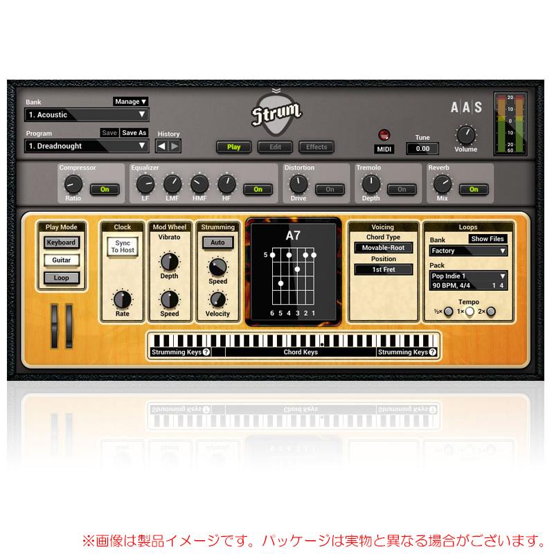 AAS STRUM GS-2 安心の日本正規品!