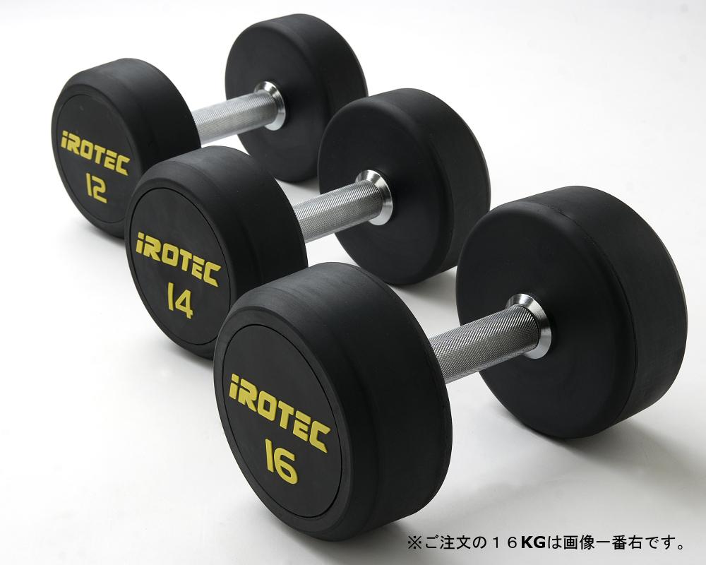 IROTEC(アイロテック)ジムダンベル16KG(オールラバータイプ)/ベンチプレス トレーニングベンチ 筋トレ ダンベル トレーニング器具 トレーニングマシン ホームジム バーベル プレスベンチ 健康器具 筋トレグッズ 筋トレ器具 鉄アレイ