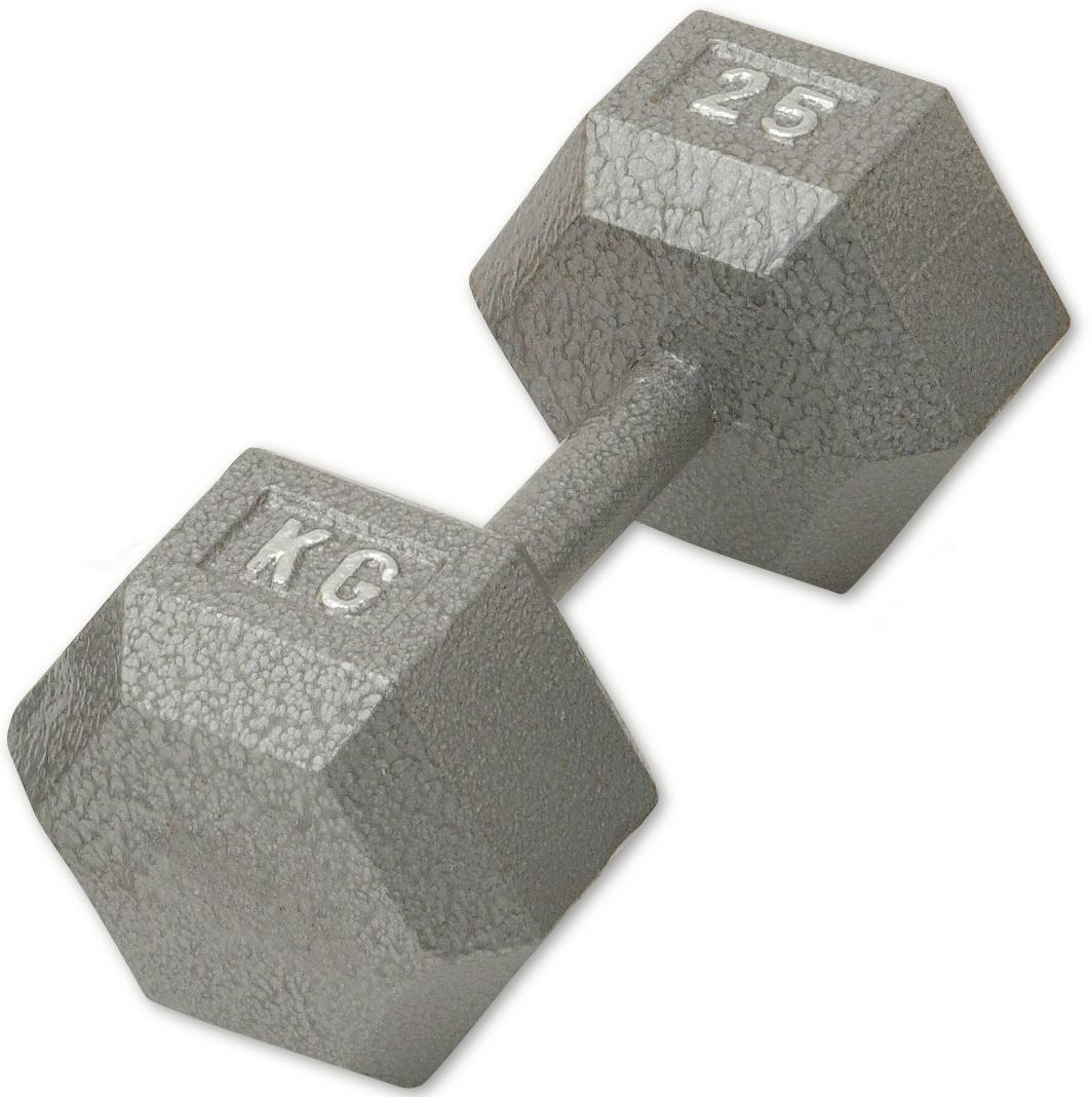 固定式ダンベル 14kg WF[WILD FIT ワイルドフィット] 送料無料 ダンベル ウエイト 筋トレ トレーニング 腹筋 背筋 ベンチプレス ジム 鉄アレイ