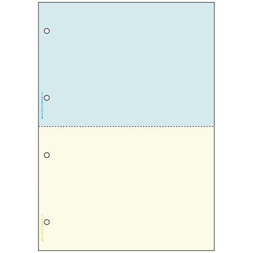 HISAGO プリンター帳票 BP2011WZ A4 2色/2面2400枚