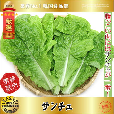 お肉を包んで食べると美味しい 韓国野菜 焼肉用野菜 送料0円 内祝い サンチュ 在庫ある場合はすぐ発送可能 100枚 毎週水曜日入荷