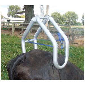 【起立不能の牛に】クイックリフト