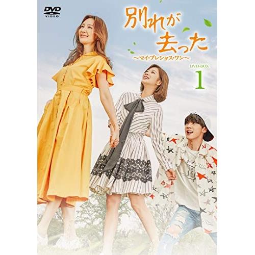 【取寄商品】 DVD/別れが去った~マイ・プレシャス・ワン~ DVD-BOX1/海外TVドラマ/BBBF-9051