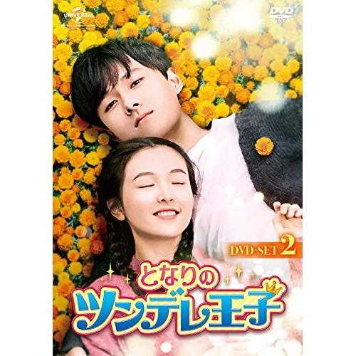 DVD/となりのツンデレ王子 DVD-SET2/海外TVドラマ/GNBF-5351 [3/3発売]
