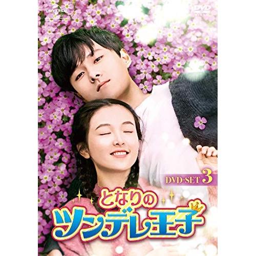 ▼DVD/となりのツンデレ王子 DVD-SET3/海外TVドラマ/GNBF-5352 [4/2発売]