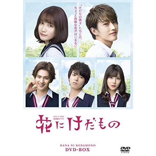 DVD/花にけだもの DVD-BOX (本編ディスク3枚+特典ディスク1枚)/国内TVドラマ/EYBB-11972