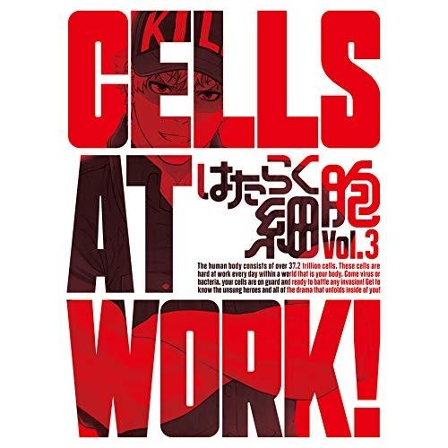 DVD はたらく細胞 Vol.3 品質検査済 本店 DVD+CD TVアニメ 完全生産限定版 ANZB-14705